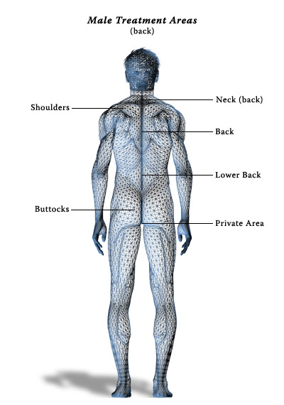 Treatment Areas - Male Back